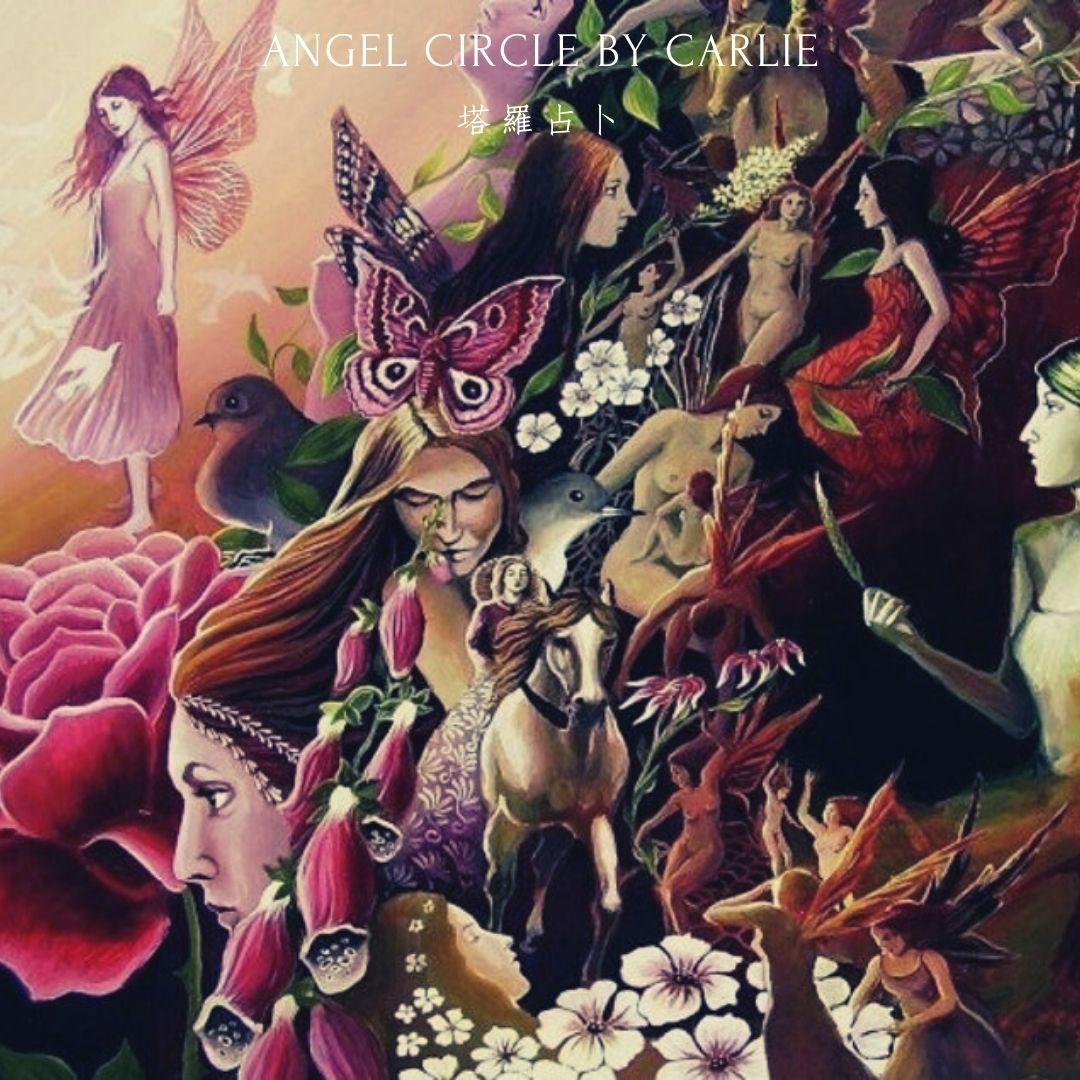 星座運勢雙魚天秤香港塔羅占卜CARLIE angel circle tarot horoscope